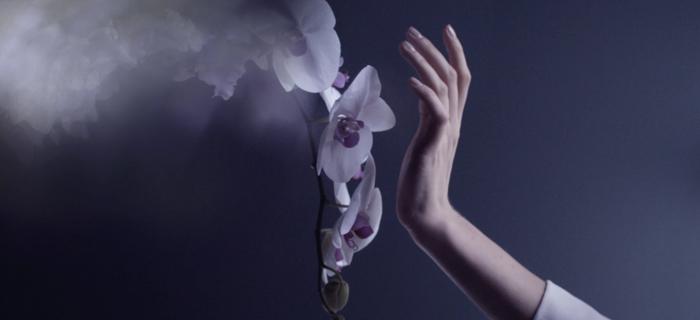 BG-Monceau-Fleurs-1